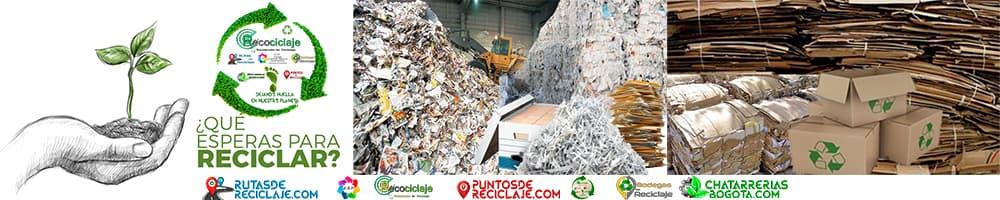 Reciclaje celulosa Papel Carton