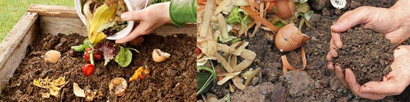 Cómo hacer compost en tu hogar