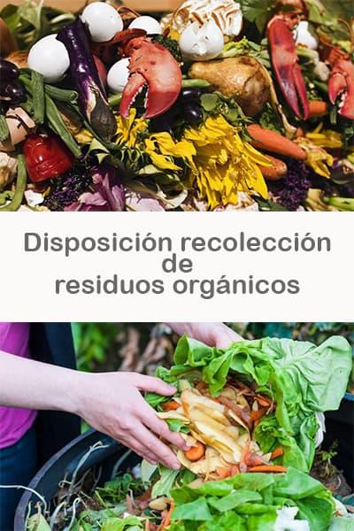 Disposición recolección de residuos orgánicos