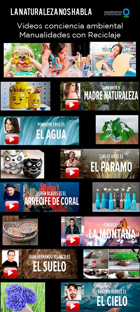 Videos conciencia ambiental Manualidades con Reciclaje